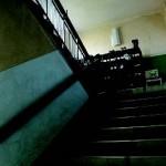 わたのは小学校の階段